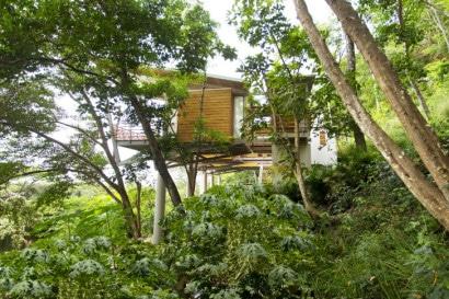 Vista de la casa construida en bosque frondoso