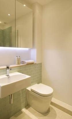 Diseño de cuarto de baño en casa angosta