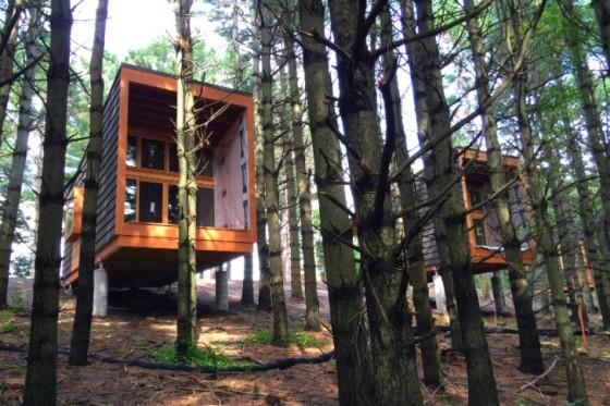 Diseño de cabaña de madera construida en madera