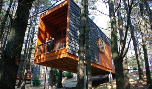 Diseño de cabaña de madera