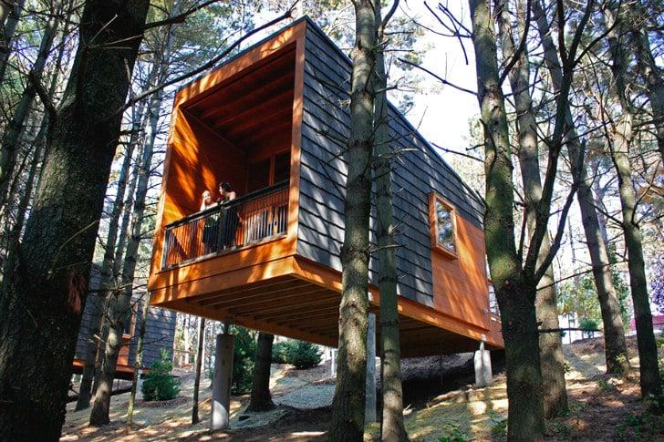 Dise o de peque a caba a de madera construye hogar for Cabanas de madera pequenas