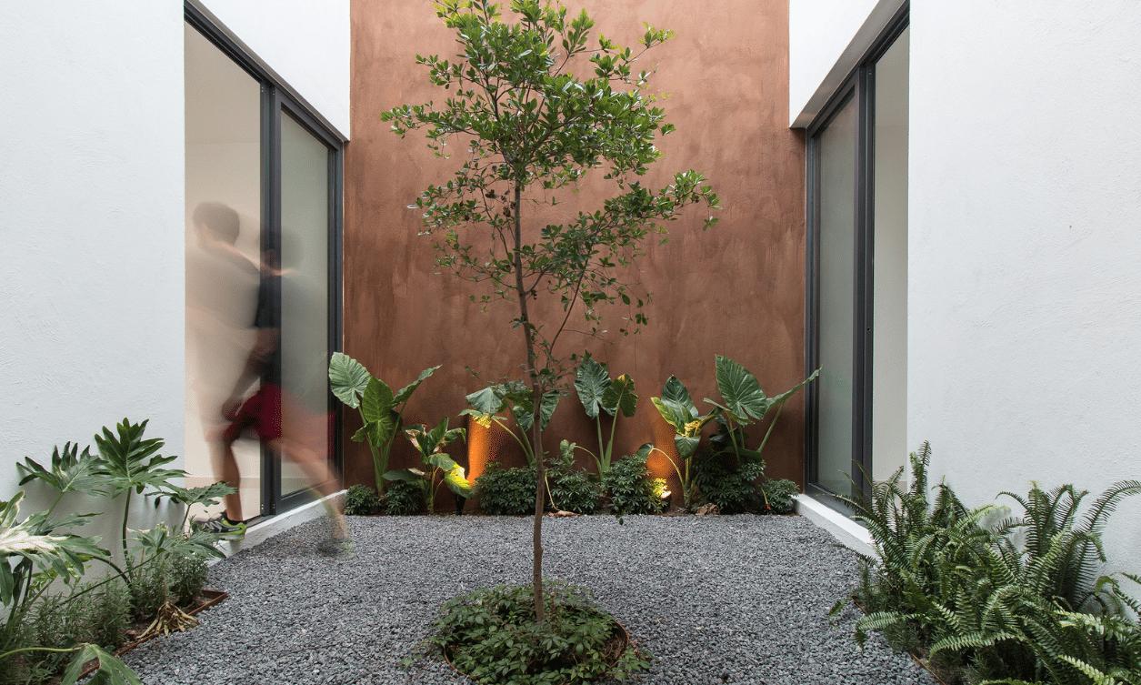 Dise o de casa dos pisos minimalista construye hogar - Jardin de interior ...