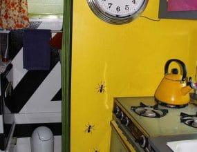 Photo of Diseño original de pequeña casa rodante, inspirado en colores vivos