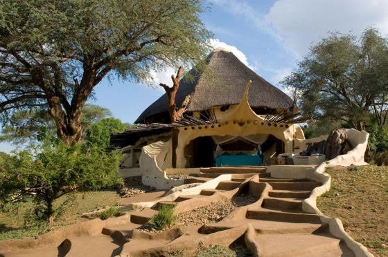 Diseño de exteriores de casa orgánica