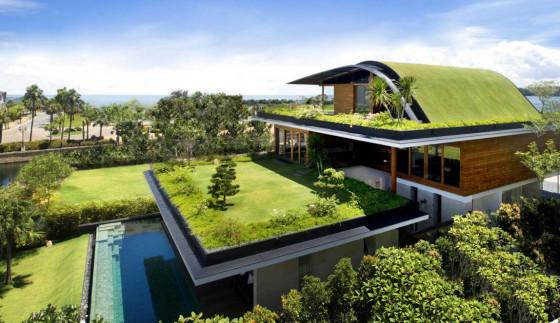 Jardín en todo  el techo de la vivienda