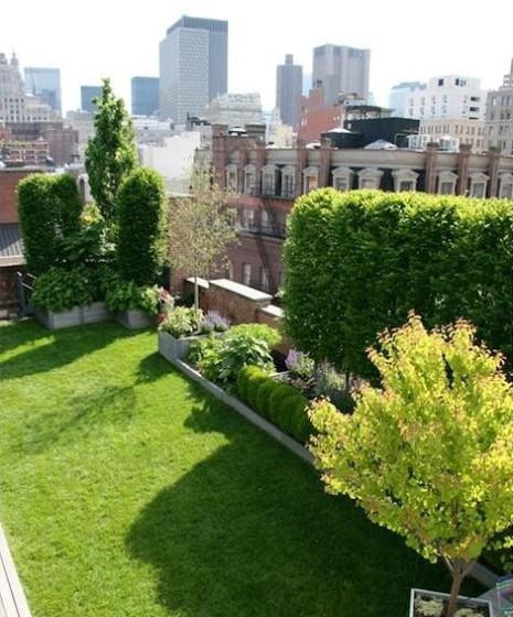 Diseño de jardín en el techo de un edificio en una gran ciudad