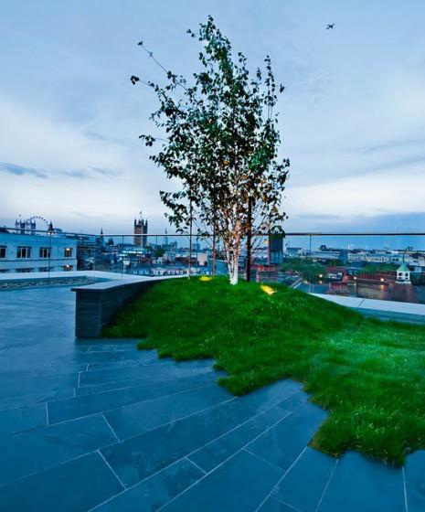 Diseño artístico de jardín en el techo de vivienda
