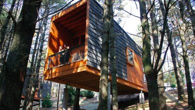 Photo of Diseño de pequeña cabaña de madera, moderna construcción se integra a la naturaleza