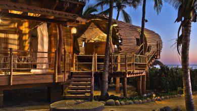 Photo of Diseño de cabaña de playa construida con bambú y madera,  construcción se integra al entorno natural