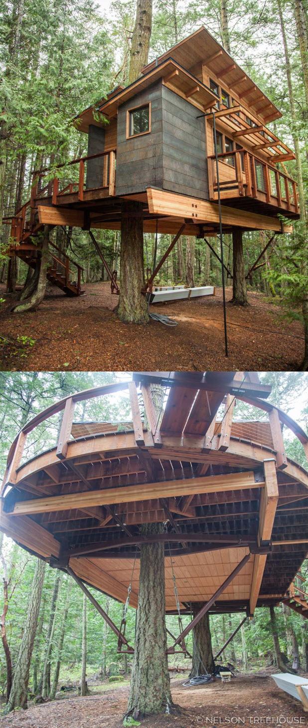 Casa del árbol arquitectónica